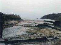 第二波引き波後の漁港