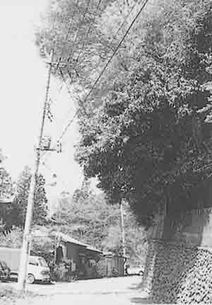 58_p64-2
